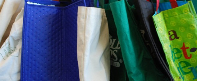 Reusable Bags for Fundraising: Sell and Save Environment!