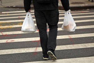 The Disposable Bags Approved by NYC Lawmakers for 5-Cent Charge