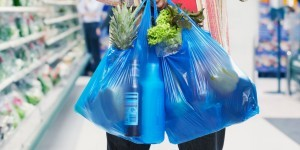Albany Pols for Disposable plastic shopping bags