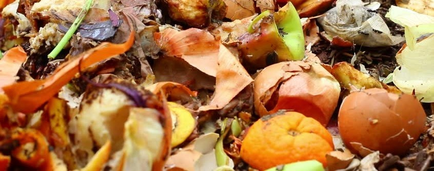 Decompose your Kitchen Scraps