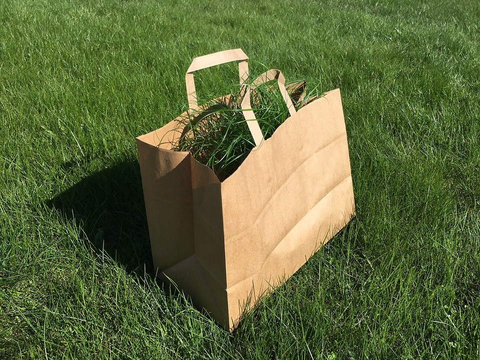 What Drives the Growth of Green Packaging Market?