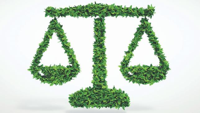 environmental_law_verdicts